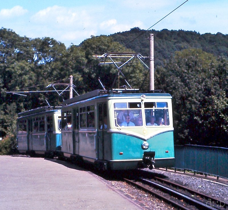 A rack train on the track between Königswinter and the Drachenfels hill.