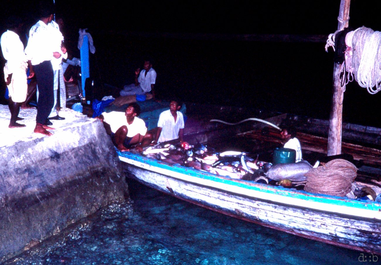 A fisherboat delivers fresh fish to a Maldivian island resort.