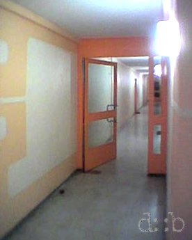 A corridor inside a 1970's subsidized appartment building.