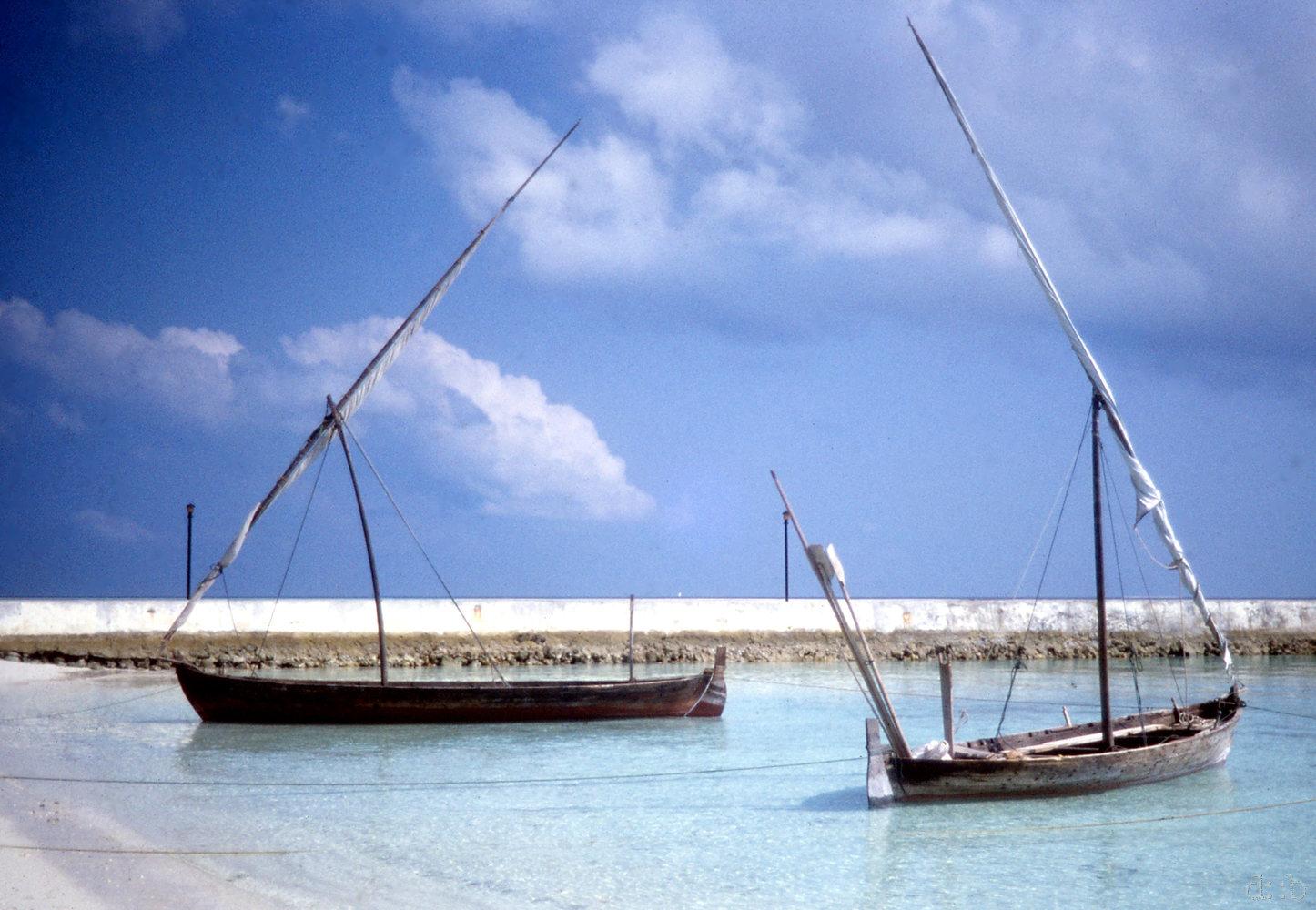Boats, moored to Biyadhoo Beach.