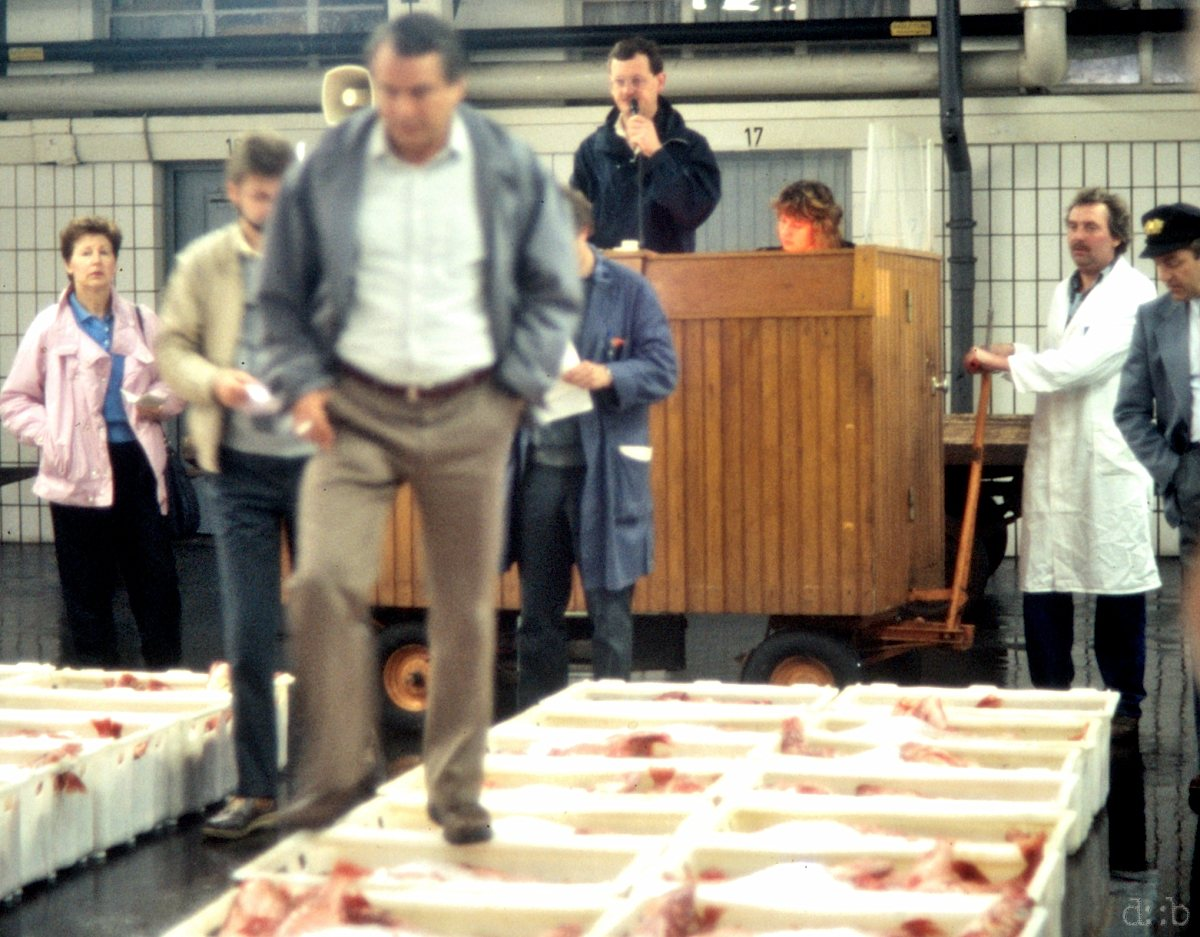 Fish is being sold in Hamburg's auction hall.