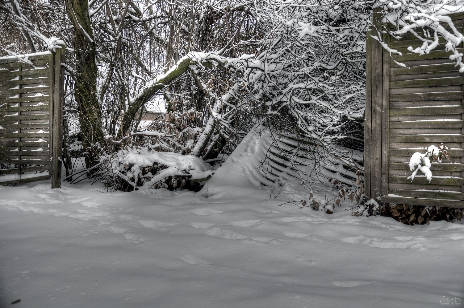 Snow loads seem to have crashed into an instable garden fence.