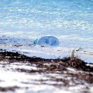 Plastic flotsam, stranded at Biyadhoo beach.