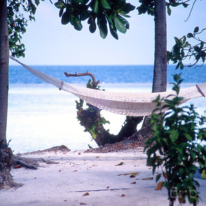 A hammock on a Maldivian beach, with the beach and the sea in the background.