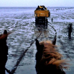 Horse carriages in the mud flat between Cuxhaven and Neuwerk in Northern Germany.