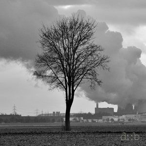 The Neurath lignite power plant, under heavy steam
