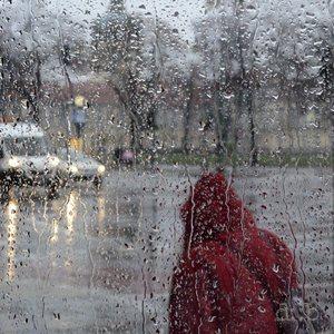 Charlottenburg Palace, seen through a rainy bus stop screen