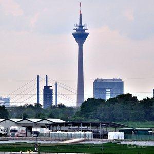 Gardener facilities in the former flood meadows in the Rhine's loops in Düsseldorf