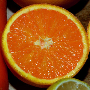 Sliced citrus fruits, side by side with a carot.