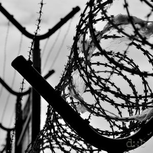 Barbed wire enclosing Gdansk's Lech Walesa airport