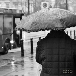 People with umbrellas heading for the bus